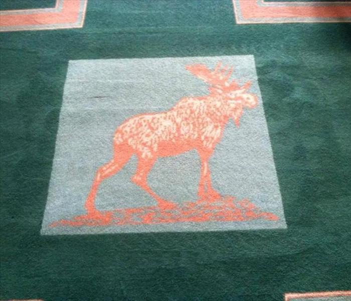 Commercial carpet cleaning in Charleston, WV After